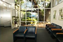 Neurological Specialties | Tampa | Board Certified Neurologists & Neurosurgeons